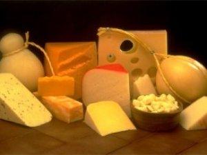 Фото: Сир в Україні подешевшає на 20%