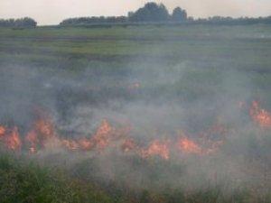 Фото: Пожежу під Полтавою гасили 15 годин