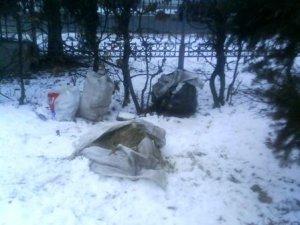 Фото: Корпусний парк Полтави знову перетворили на смітник