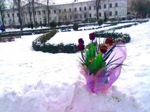 """Фото: У Полтаві серед снігу """"виросли"""" квіти"""