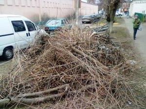 Фото: Посеред центру Полтави височіє велика купа сміття