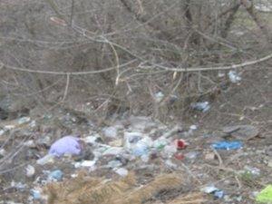 Фото: У Полтаві спуск до ставків  перетворили на сміттєзвалище