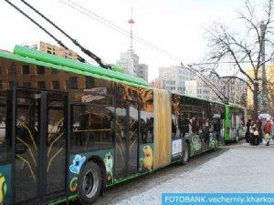 Фото: У Полтаві з'явилися тролейбуси з символікою Євро-2012