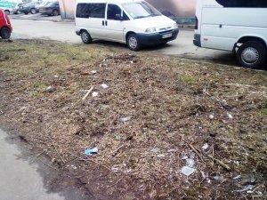 Фото: Купу сміття посеред Полтави прибрали
