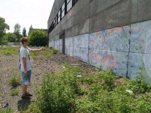Фото: Чемпіонат закінчився - полтавські графіті замалювали