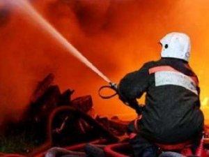 Фото: У Полтаві гасили дві пожежі та знищували чотири артилерійські снаряди