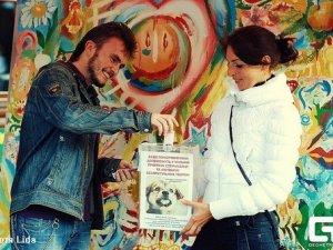 Фото: У Полтаві на COLORFESTі малювали, продавали прикраси, займались буккросінгом та збирали гроші для тварин