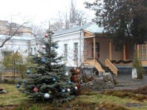 Фото: Під час зимових канікул полтавським школярам зроблять знижку в музеях