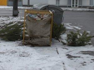 Фото: Полтавці масово викидають ялинки з квартир