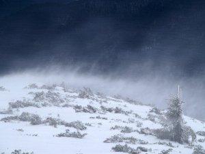 Фото: У Полтаві та області штормові вітри будуть до 23 січня