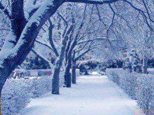 Фото: Відомо, коли у Полтаві припиниться сніг