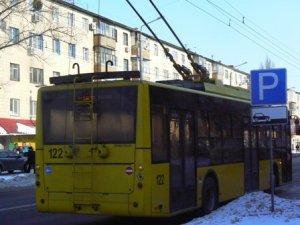 Фото: Через морози по всій Полтаві зупинились тролейбуси