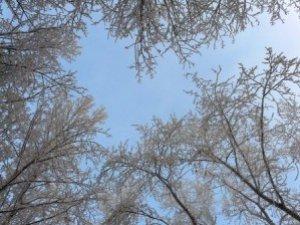 Фото: Сьогодні, аби передбачити погоду, дивіться на небо