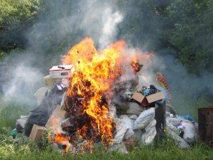 Фото: Під Полтавою правоохонці знищили 130 кілограм наркотиків - фоторепортаж