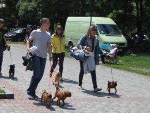 Фото: У полтавському парку Перемога зібралось більше півтисячі собак