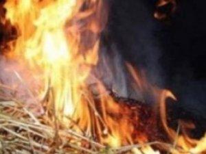 Фото: Під Полтавою вночі згоріли п'ять тюків соломи та сарай