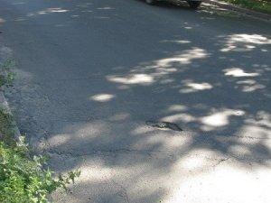 Фото: Як відремонтували вулиці у Полтаві: дослідження «Кола» (фото)