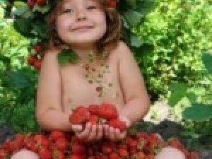 Фото: Народжені 22 липня розуміються на грибах та ягодах