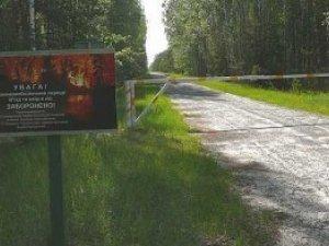 Фото: Полтавцям заборонять відвідувати ліси