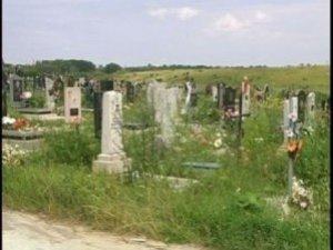 Фото: Під Полтавою на кладовищі викрали до десятка металевих огорож