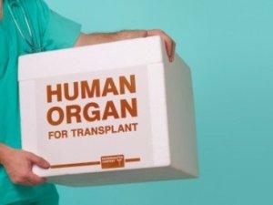 Фото: Пересадка органів в Україні – у віддаленій перспективі
