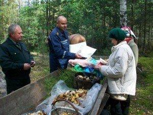 Фото: Полтавські еменесники розповіли, яким прикметам щодо грибів не варто довіряти