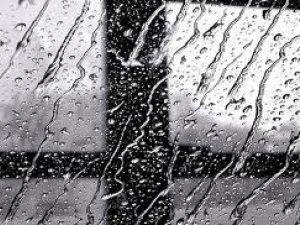 Фото: Синоптики обіцяють дощ на 3 листопада