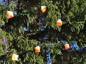 Фото: У зимовому дендропарку пройшли передноворічні змагання полтавських туристів