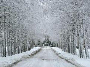Фото: Погода на 30 січня
