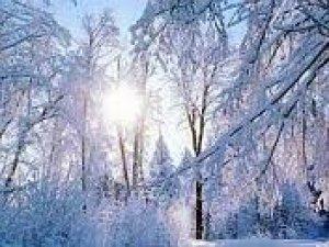 Фото: На сьогодні синоптики прогнозують сонячну погоду
