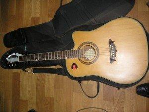 """Фото: У Полтаві товариш музиканта-іноземця """"поставив на ноги""""  міліцію через гітару"""
