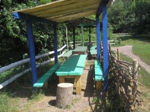 Фото: У полтавських лісах можна цивілізовано відпочивати