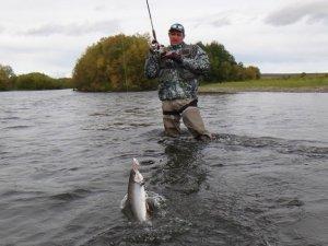 Фото: Новий закон про рибальство розширить права полтаців-орендарів ставків