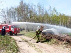 Фото: Лісники Полтави провели навчання по боротьбі з лісовими пожежами