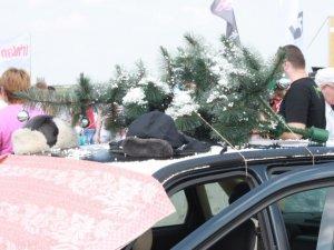Фото: Грандіозні гонки AdrenalinFest у Полтаві: побачити можна навіть Діда Мороза