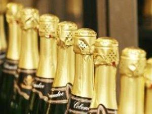 Фото: Колу – 3 роки. Дізнайтеся, хто отримав шампанське!