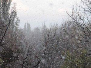 Фото: Якщо сьогодні випаде сніг, то 22 листопада прийде справжня зима