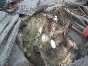 Фото: Браконьєр в Глобинському районі незаконно виловив 11 кілограмів риби