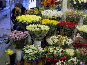 До 8 Березня залишився день: про ціни та популярні квіти у Полтаві