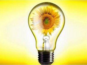 На збереження електроенергії у школах та лікарнях на Полтавщині витратять 284 мільйони