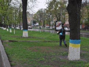 Фото: У Полтаві створили алею жовто-блакитних дерев