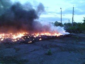 Фото: Фотоогляд подій у Полтаві за тиждень (5-11 травня)