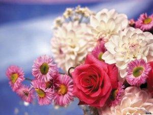 """Фото: Улюблена квітка """"розповість"""" про характер жінки"""