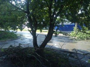 Фото: Народні новини. Наслідки буревію в Полтаві досі не прибрали