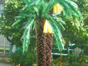 Фото: Ідеї для саду: пальма з пластикових пляшок