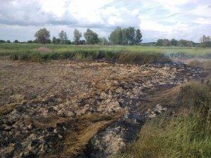 Фото: У Глобинському районі на Полтавщині горить торфовище