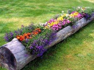 Фото: Ідеї для саду: як прикрасити подвір'я пеньками