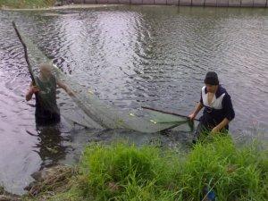 Фото: На Полтавщині незаконно наловили риби на 10 тисяч
