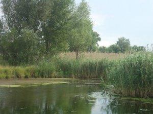 Фото: Зелений туризм на Полтавщині: де і як відпочити дешево