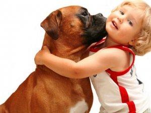 Як вибрати домашню тварину для дитини